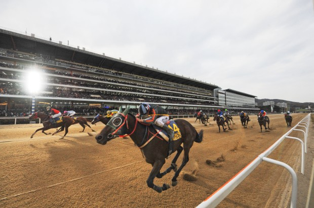 New Citadel Korea Racing Authority