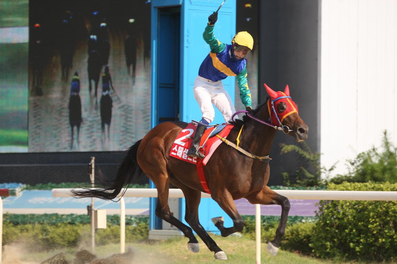 Special Stone Korea Racing Authority