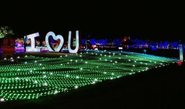 Busan Illumina