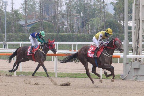 Seouri Byeol - Korea Racing Authority