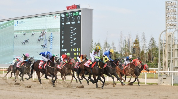 Indian Star Jeju Governors 2017 Finish - Korea Racing Authority