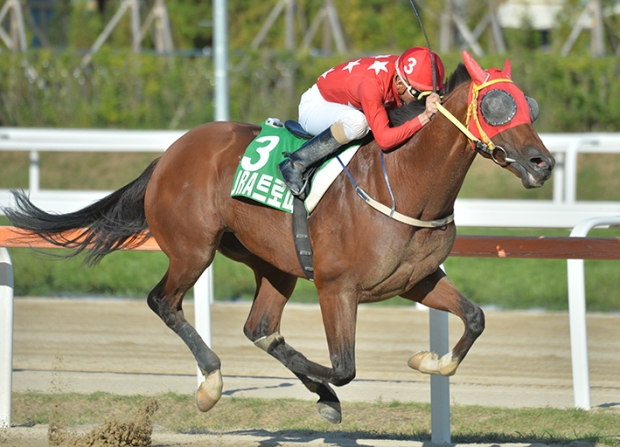Road Winner - Korea Racing Authority