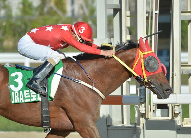 Road Winner winning the JRA Trophy - KRA