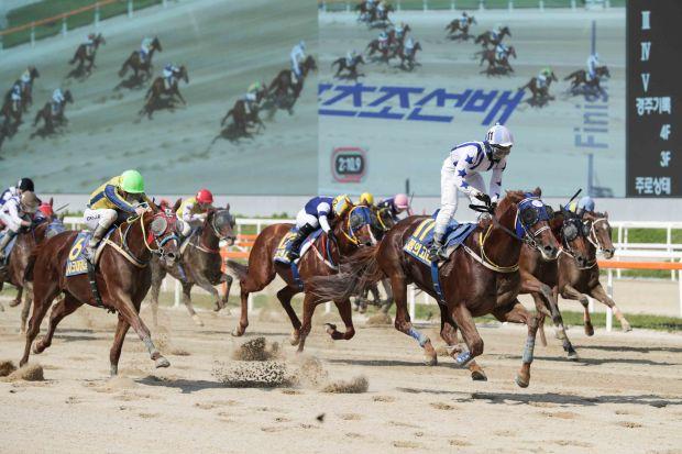 Burui Gori Sports Chosun