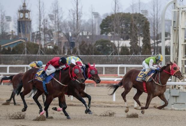 Segye Ilbo Cup 2020 Finish Simjangui Godong Do kki Blade Gaon Chamo