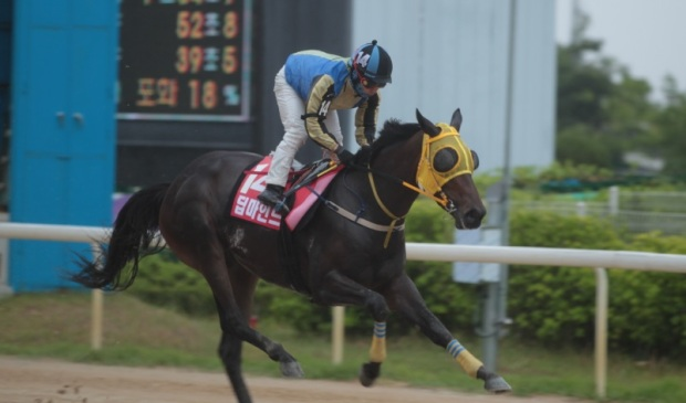 Deep Mind 2019 Korean Oaks